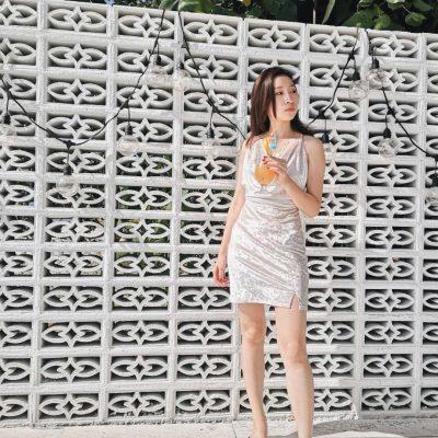 Xylia Velvet Dress